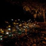 dzn_An-Almost-Ephimeral-Autumn-by-Luzinterruptus-1