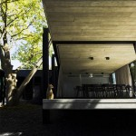 ELM-Willow-House-Architects-Eat-plusMD-11