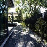 ELM-Willow-House-Architects-Eat-plusMOOD-4