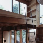 tree-house245