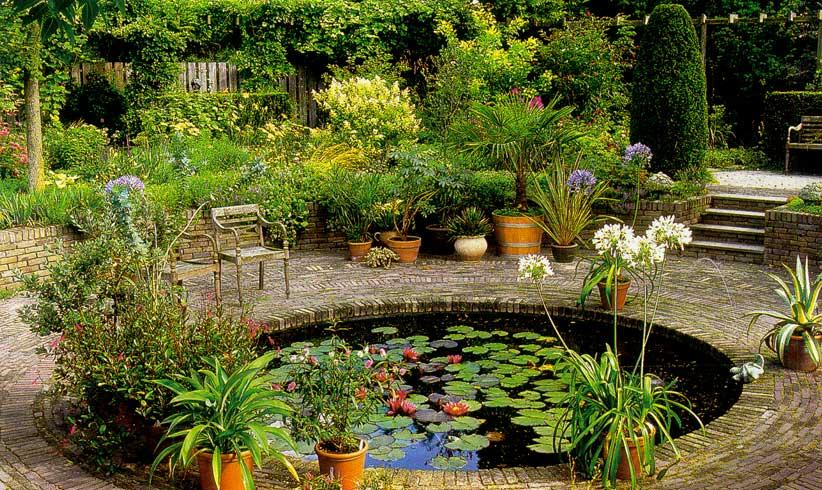 Вредители болезни и повреждения овощных культур в саду и